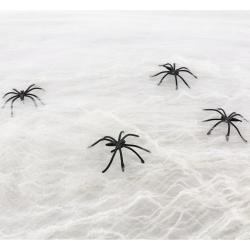 Pavučina s pavúkmi, Halloween